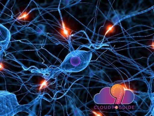 Healing Nerve Damage & Peripheral Neuropathy - Cloud 9 Guide